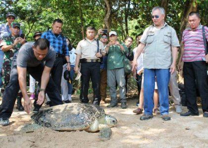 Panglima TNI: Hutan Punya Nilai Strategis
